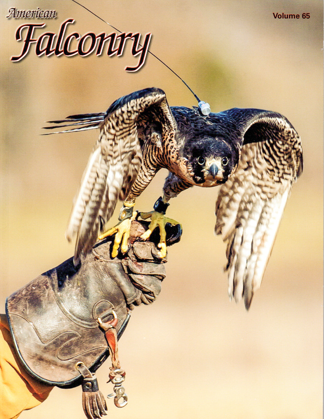 American Falconry Magazine Cover